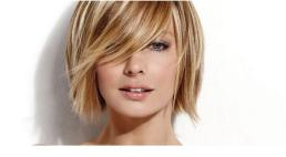 Light-Brown-Hair-with-Caramel-Highlights-Picture